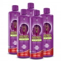 LR Mind Master Formula Red Série 5 ks - 5 x 500 ml
